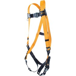 Full-body harness w/sliding back D-ring